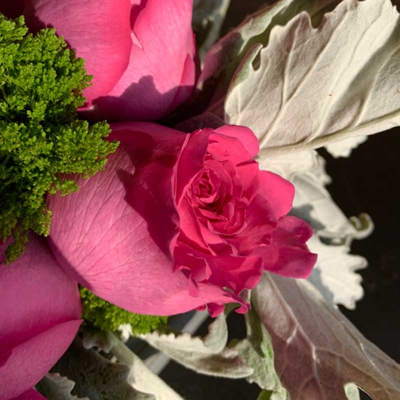 pink-rose-flower-delivery-kelowna